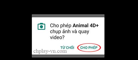 tai animal 4D card