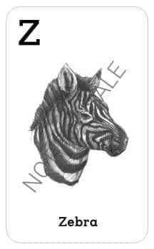 4d animal cards
